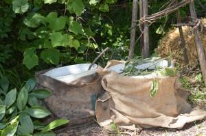 Doma pripravljeno ekološko gnojilo