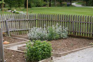Načrtovanje vrta se začne z vrtnimi potmi