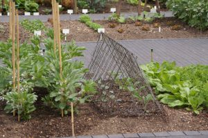 kovicnska vrtna kletka