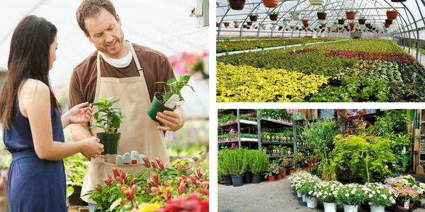 Vrtnarija - Katero vrtnarijo priporočate?