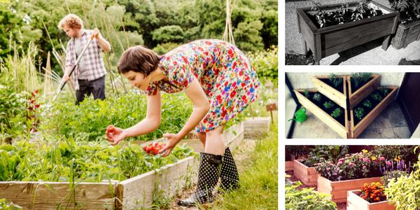 dvignjene grede, kaj saditi v dvignjene grede, vrtnarjenje z dvignjenimi gredami, balkon