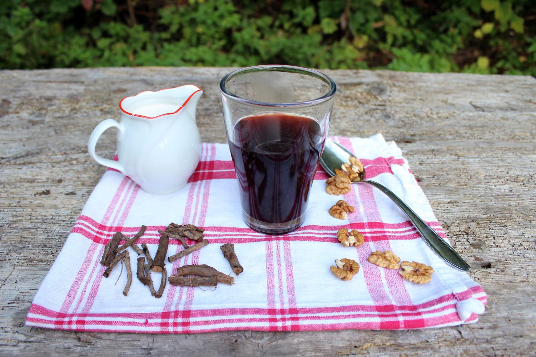 domača kava cikorija navadni potrošnik
