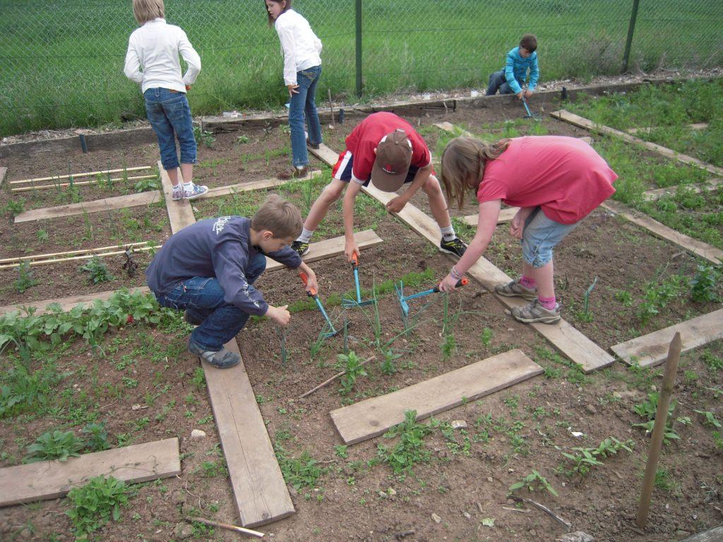 Šolski vrtovi so lahko učilnica na prostem za številne predmete: naravoslovje, matematiko, umetnost ali športno vzgojo.