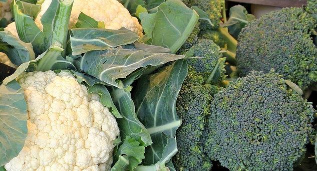 setev brokolija, setev cvetače, kdaj sdimo brokoli in cvetačo