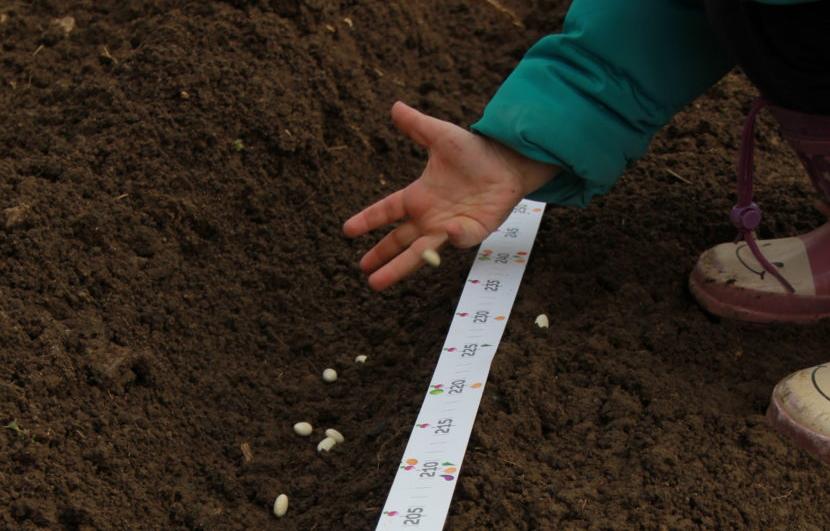 Vrtni meter - za lažje delo na vrtu. Tudi z otroki.