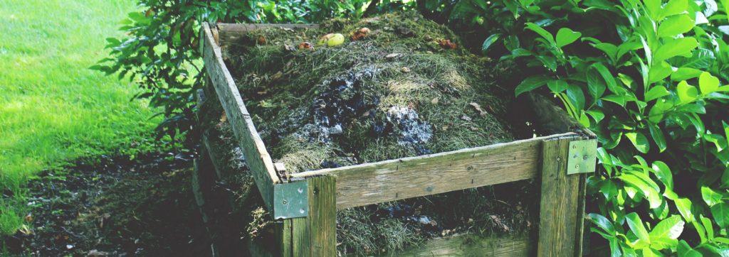 L'urina: acceleratore di compostaggio