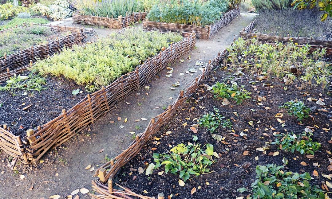gredice ob hiši, grede za vrt, priprava spomladanskih gred na vrtu