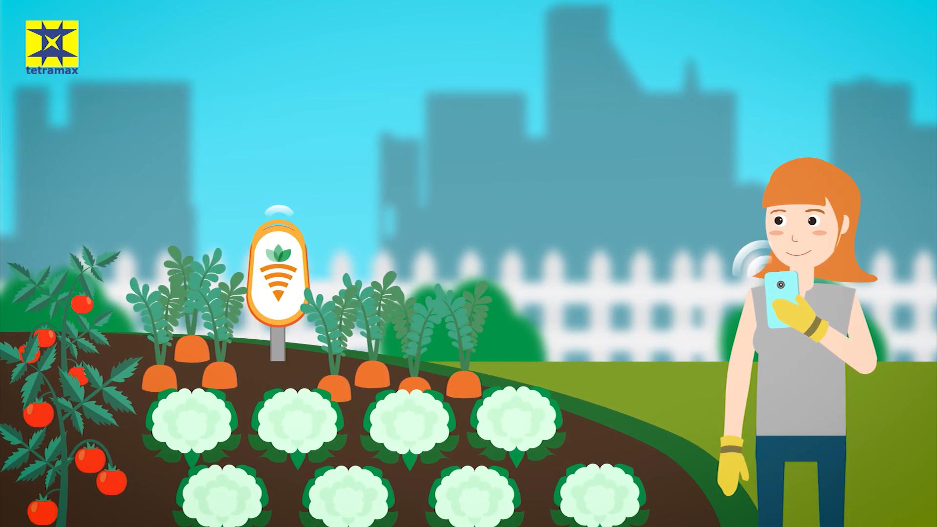 vlaga tal, temperatura prsti, rast vrtnin, zelenjadnic