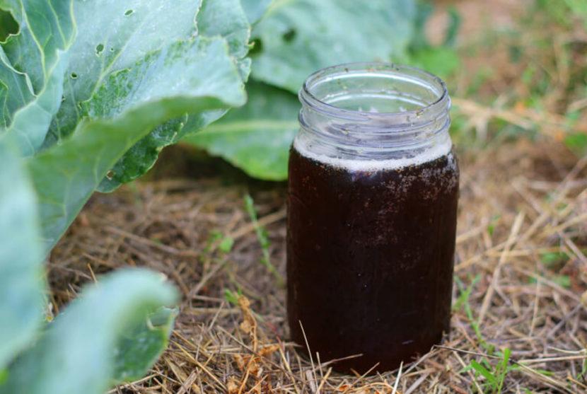 kompost, nakup, kompostni čaj, naravno gnojilo, organsko gnojilo, vrtna prst, ekološki vrt