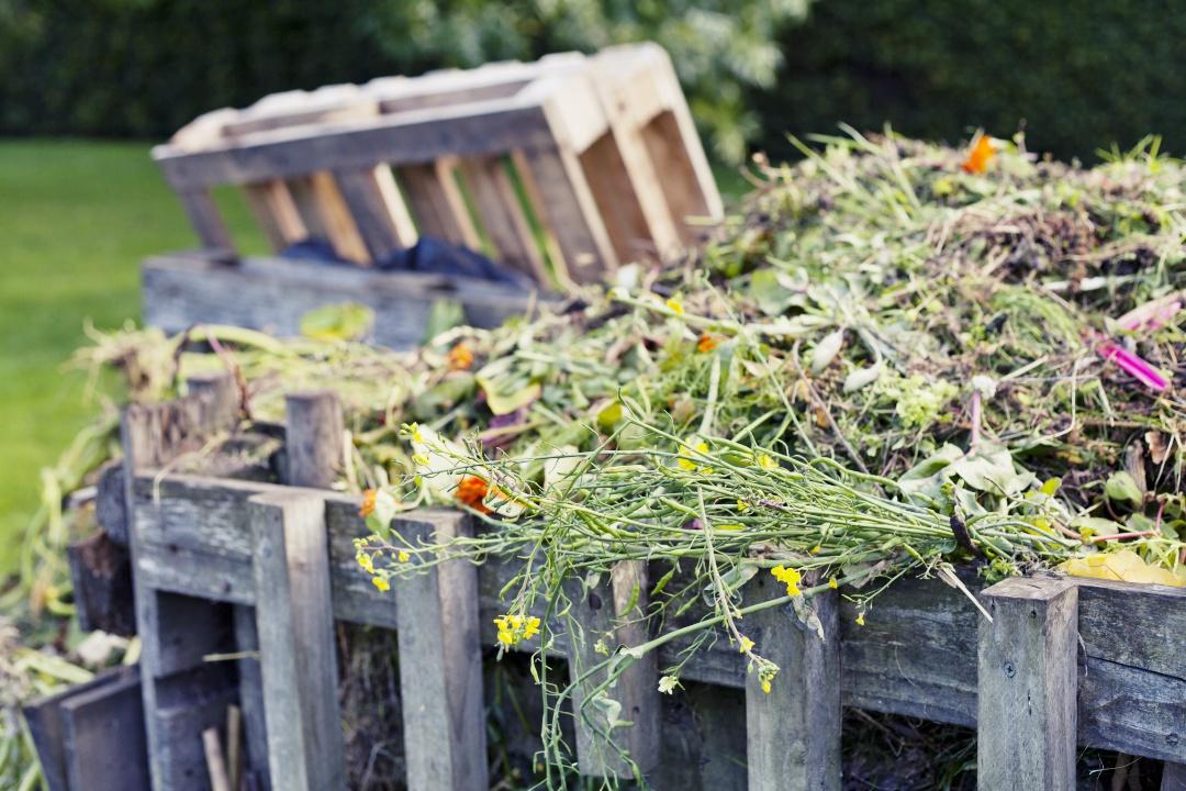 gnoj, gnojenje zemlje, gnojenje vrta, kdaj se gnoji vrt, katera gnojila uporabiti, pusta prst na vrtu