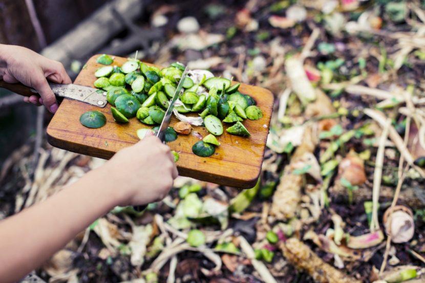 gnojenje vrta, kako gnojimo zelenjavni vrt, gnojila za vrt, kompost, zastirka