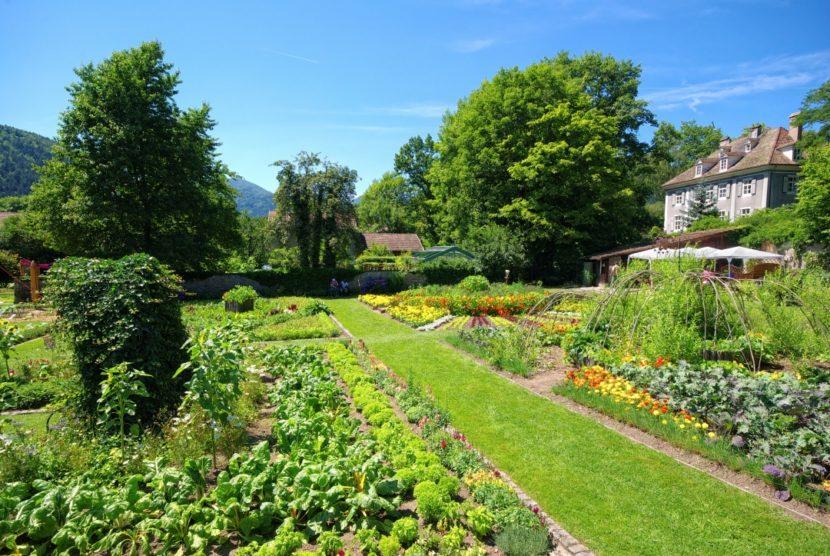 kuhinjski vrt zelenjavni vrt dizajn vrta načrtovanje vrta francoski