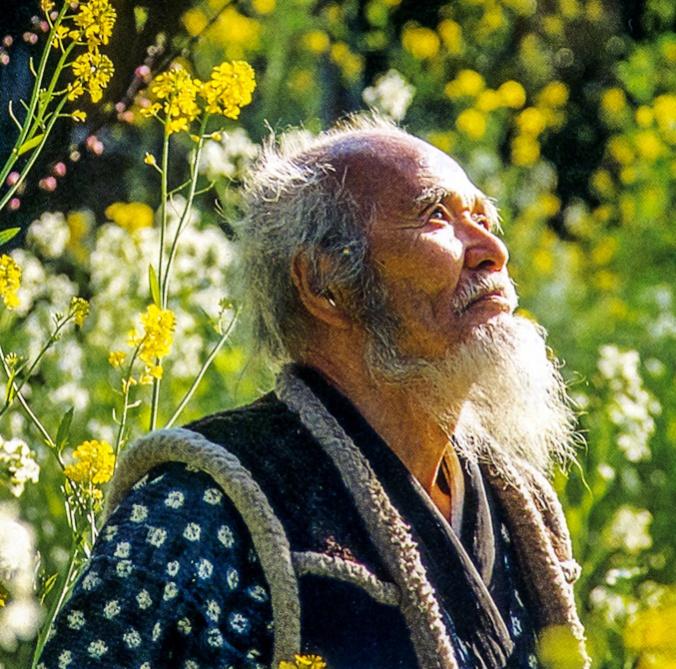 permakultura, fukuoka, knjiga o vrtu, knjige o vrtnarjenju