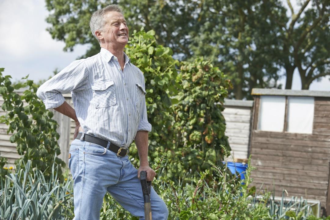 bolečine v križu pri vrtnarjenju na zelenjavnem vrtu starejši moški