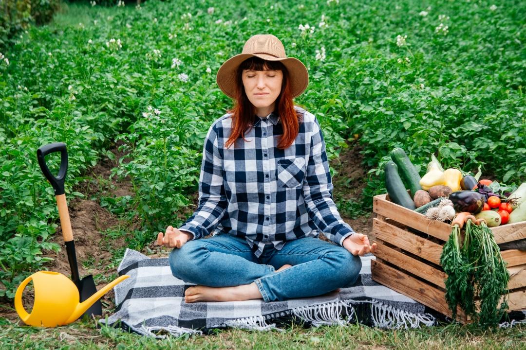 odmor sprostitev na zelenjavnem vrtu joga lotus