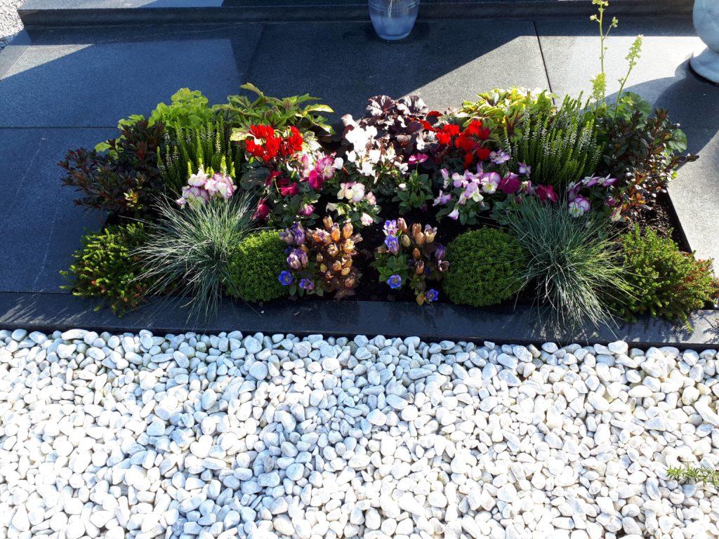 jesenska zasaditev na pokopališču2019, zasaditve pokopališče 2019, idejne zasaditve za grob 2019,nagrobne rože,trajnice za na grob, nagrobne zasaditve, nagrobne rastline