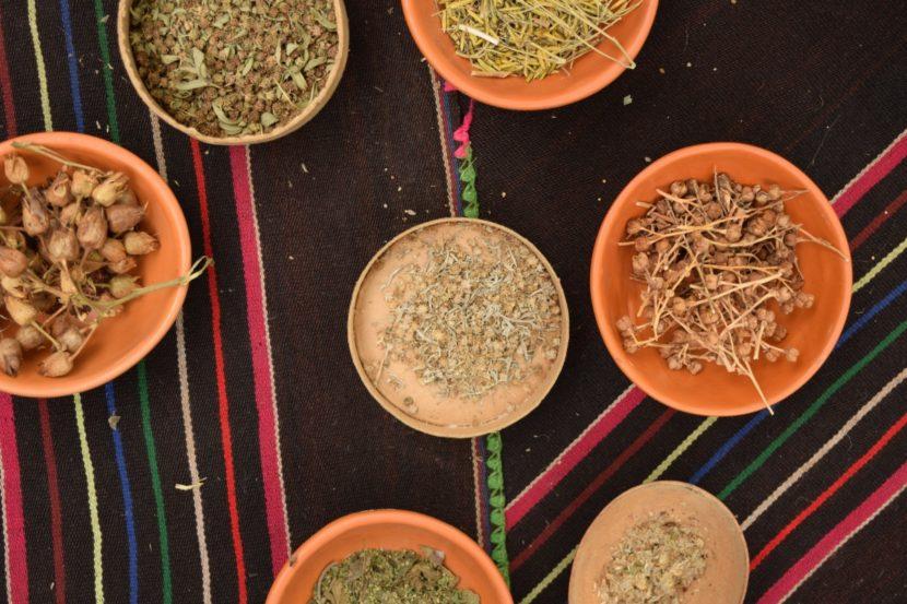 izmenjava semen zelenjavna semena domače seme