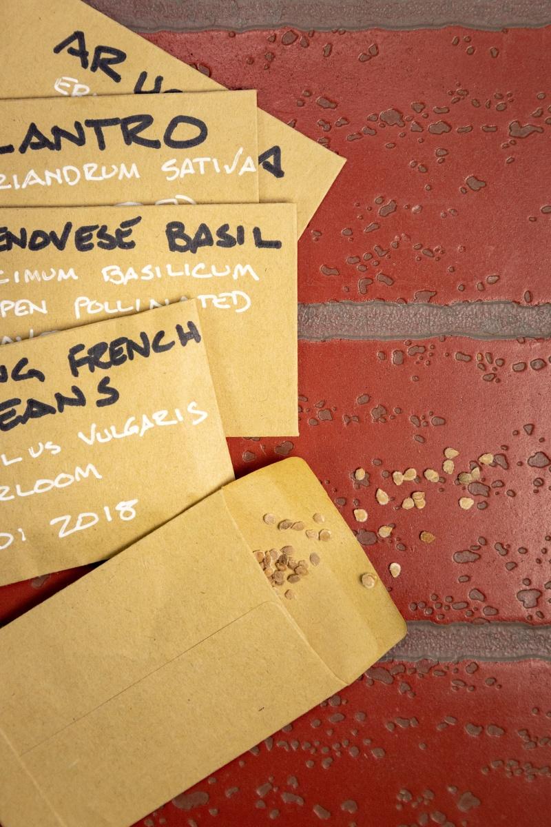 označevanje semen kaljivost semen vrečke za semena