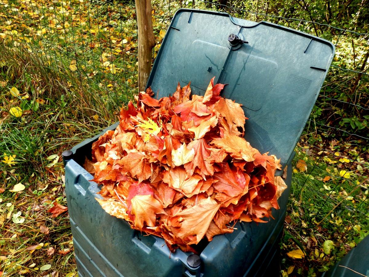 odpadlo listje na kompostu kompostiranje listja listovka