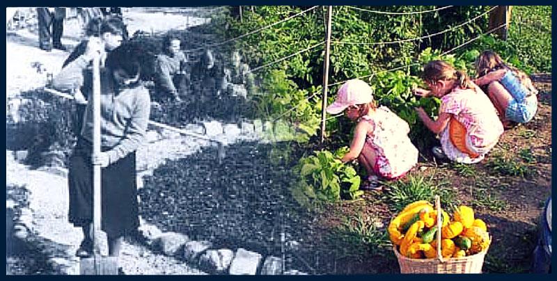 šolski vrt včeraj in danes