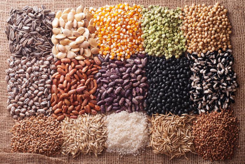 kako izbrati semena, biodinamična semena, semena, ki kalijo