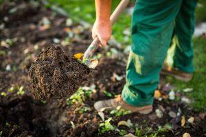 prekopavanje vrta, bakterije